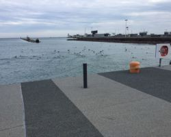 Navy Pier Chicago - ColdGrip Polyurethane Resin Surfacing